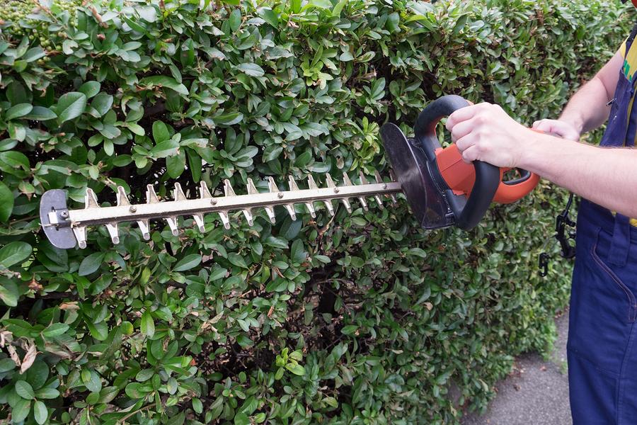 carrollton-landscaping-company