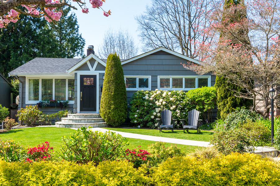 lawn-specialists-frisco