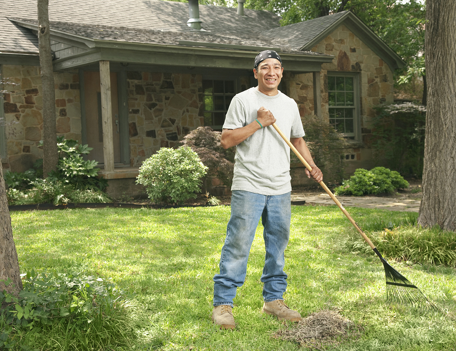 yard-maintenance-pro-tips