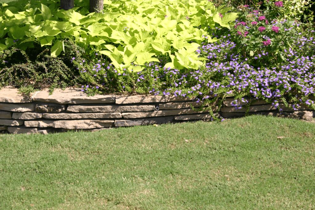 Landscape Border Gallery Lawn Connections Llc