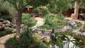Perennial-Garden-4
