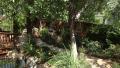 Perennial-Garden-5