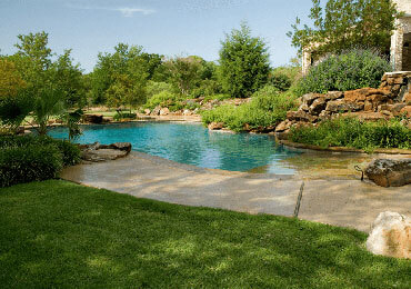 Pool Landscaping in Dallas
