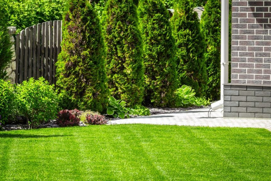 clean yard with stone path and landscaped trees